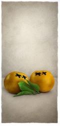 GrapefruitDeadThe-web