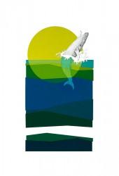 Humpback Whale-web