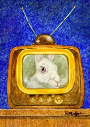 RabbitEars-web