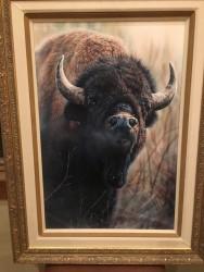bull rush original vivi crandall