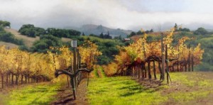 fall-vineyard by June Carey