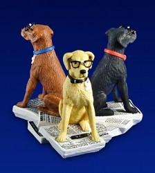 nerd dogs