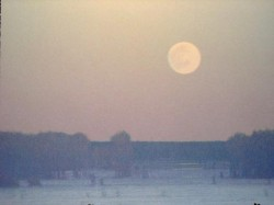 pale winter moonrise