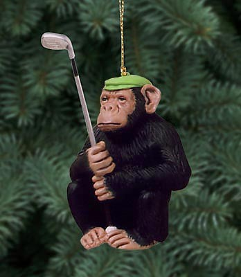the chimp shot orn
