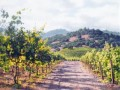 vineyard-lane by June Carey