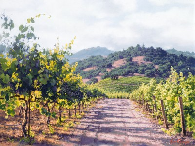 vineyard-lane by June Carey